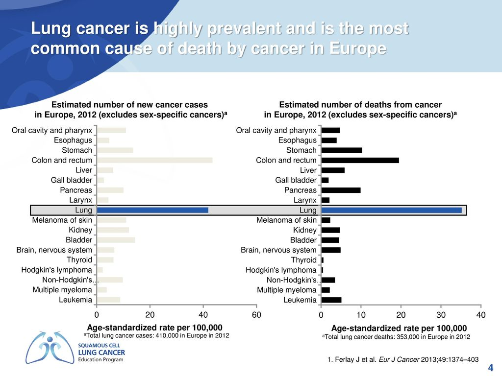 Epidemiology of lung cancer - ppt download