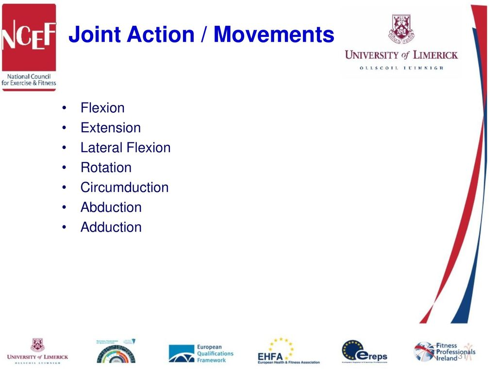 Introduction to Human Movement Studies (Kinesiology) - ppt download