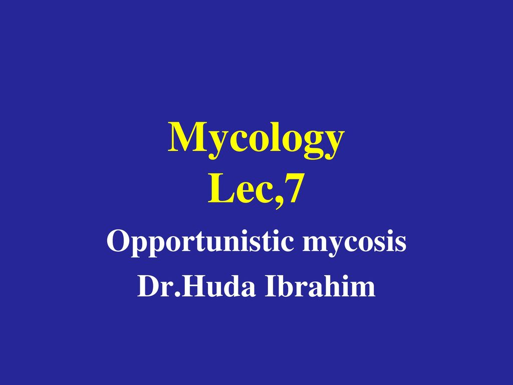 Opportunistic mycosis Dr.Huda Ibrahim