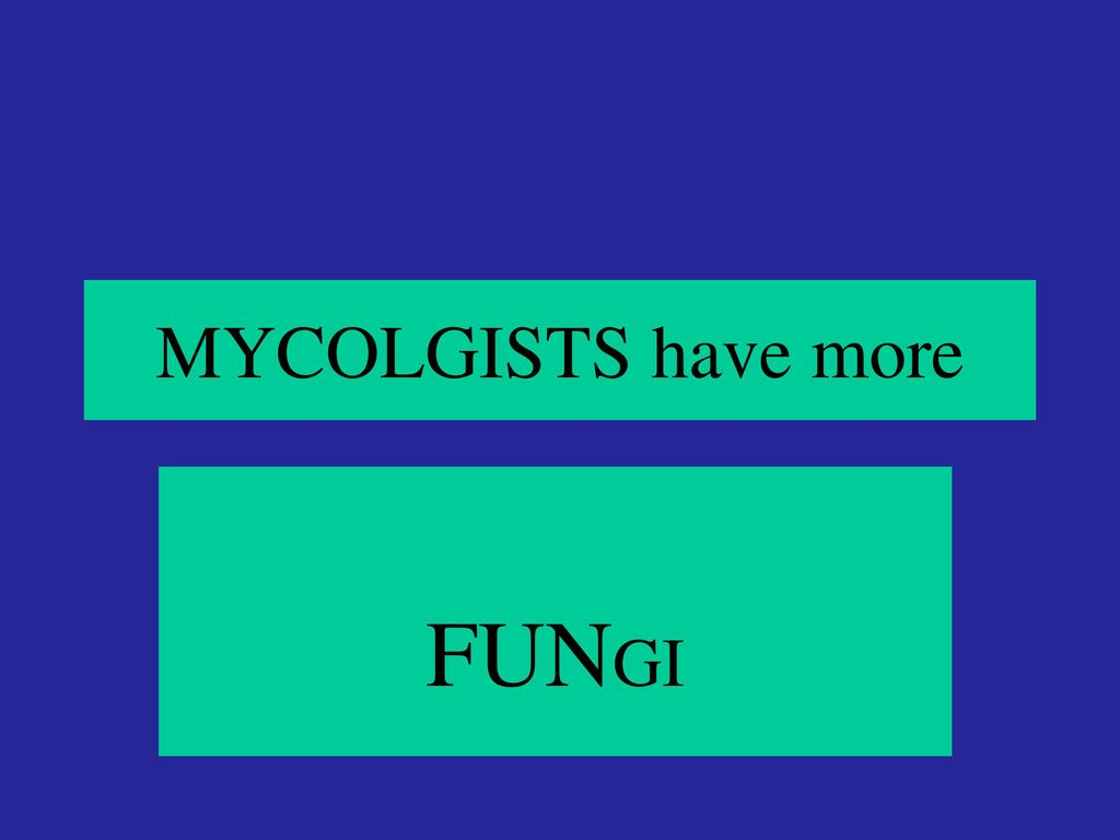 MYCOLGISTS have more FUNGI