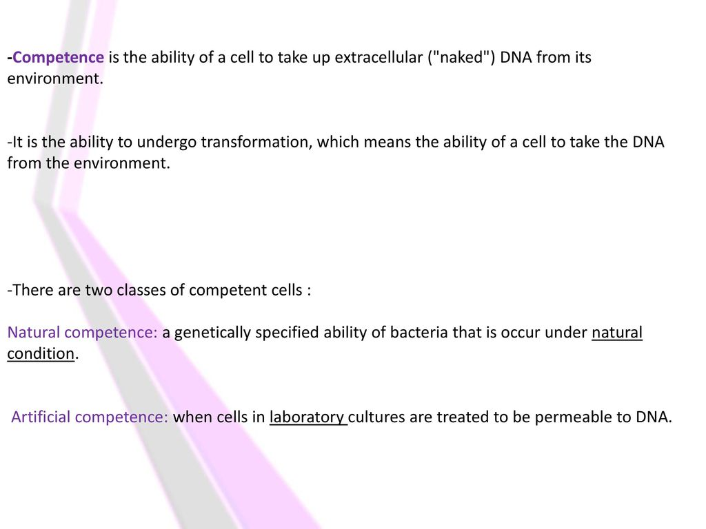 lab# 2 competent cells formation and transformation of competent