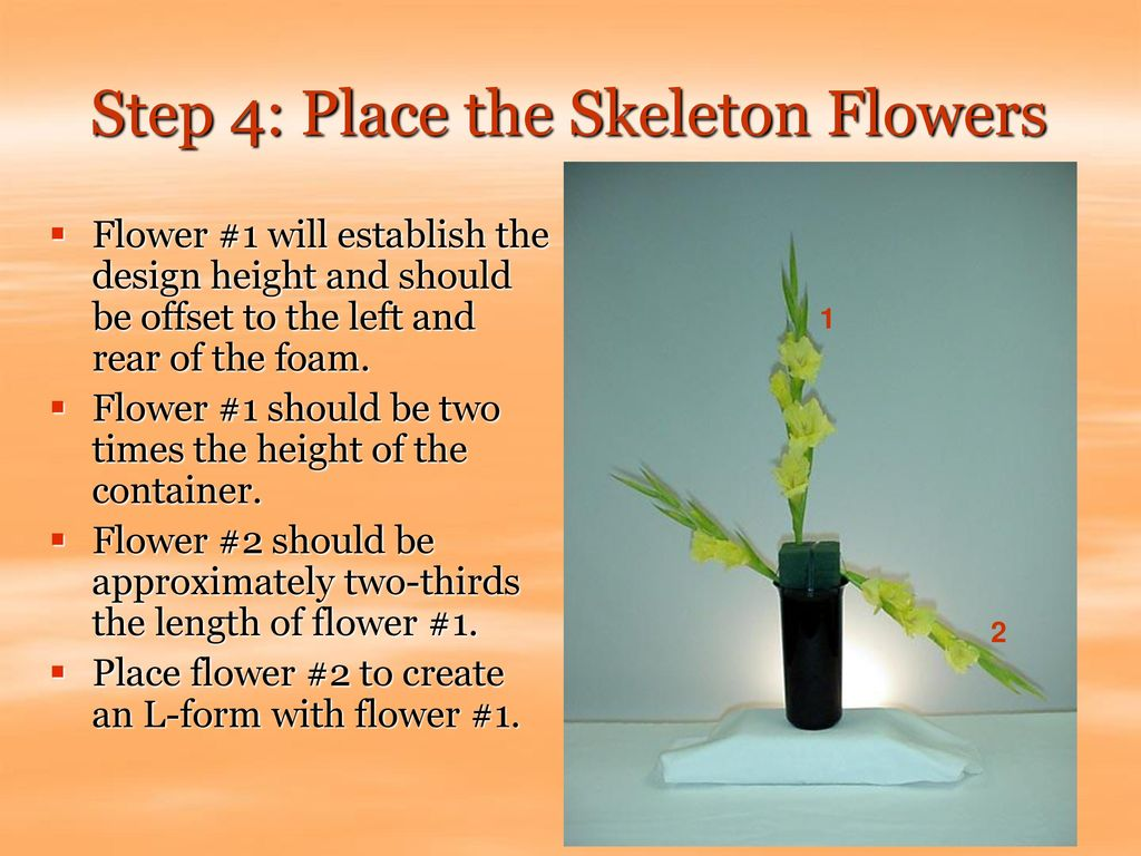 Step 4: Place the Skeleton Flowers