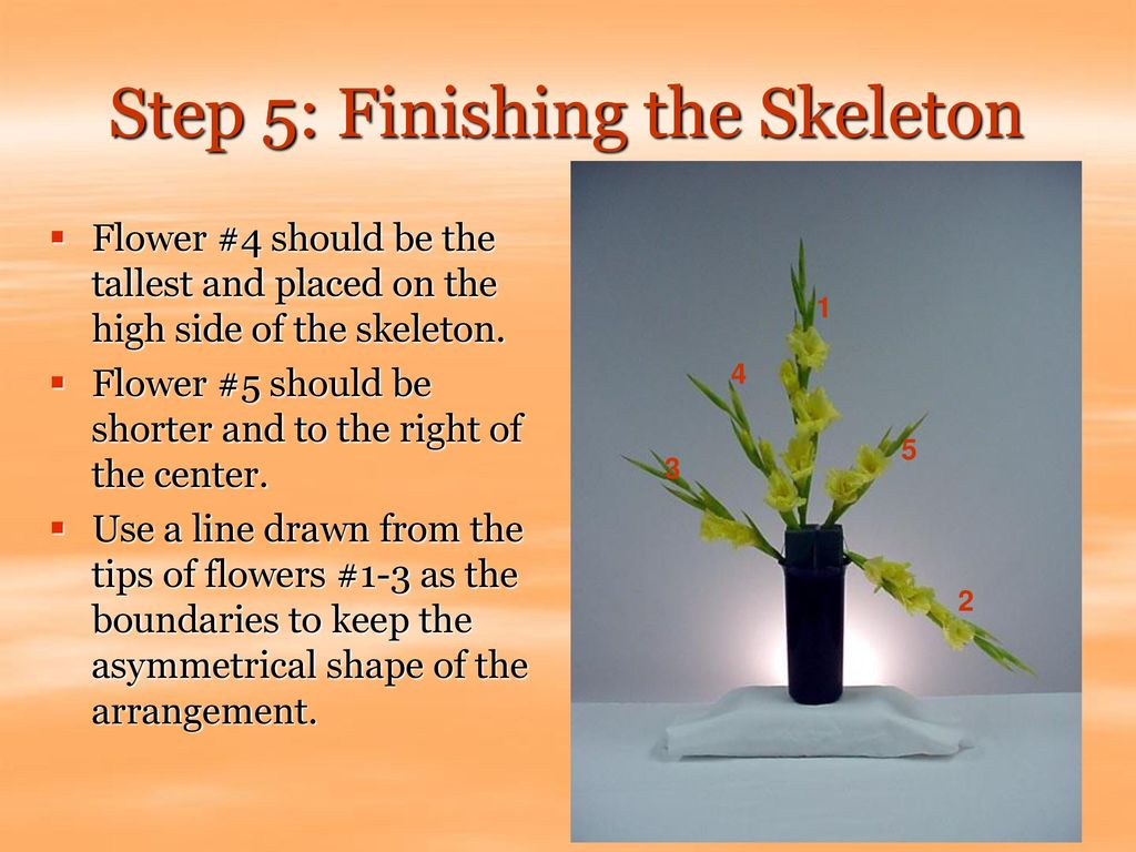 Step 5: Finishing the Skeleton