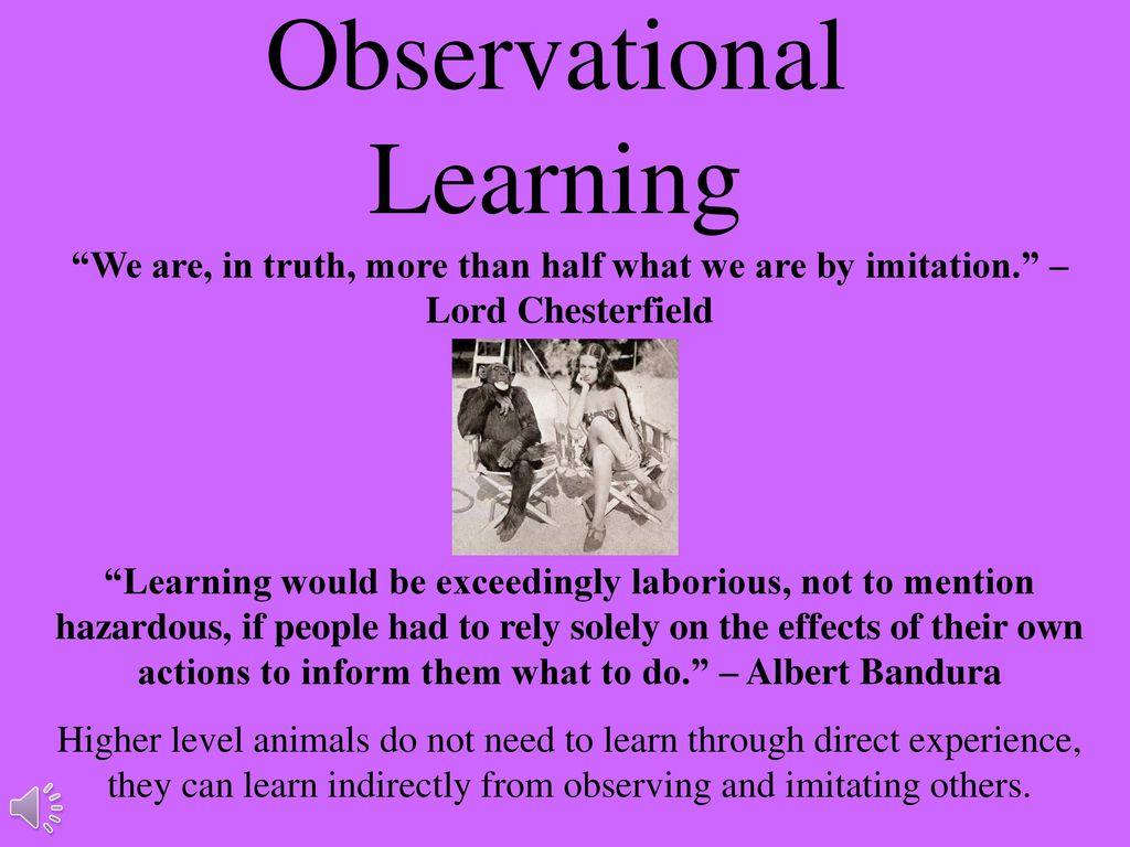 banduras observational learning studies focused on how
