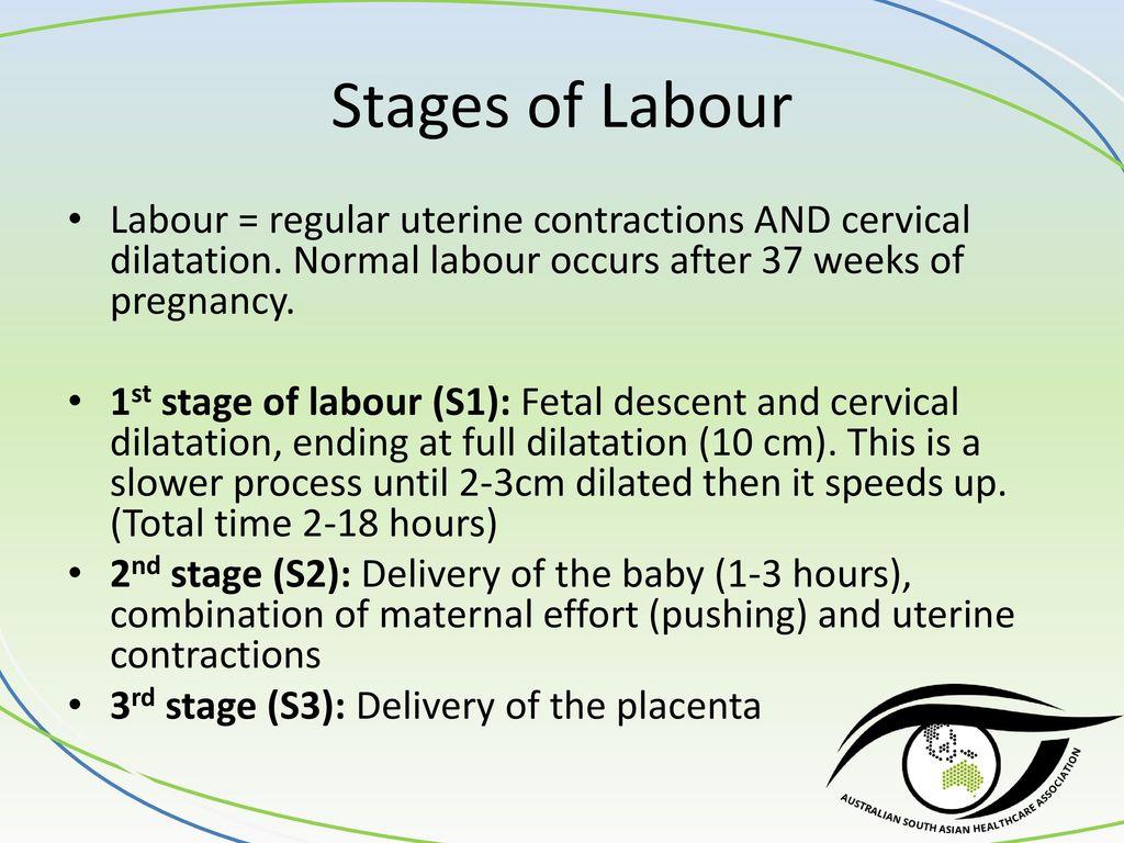 Prenatal, Antenatal, Intrapartum and Postpartum Care - Dr Stacey