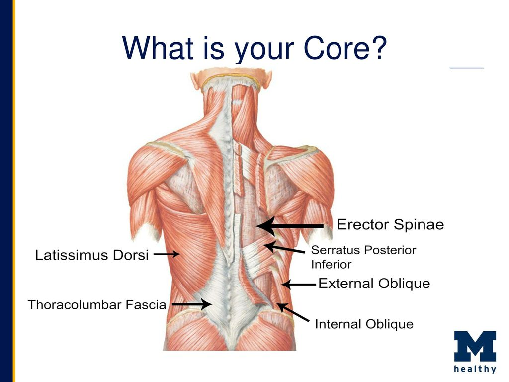 What is the core 84