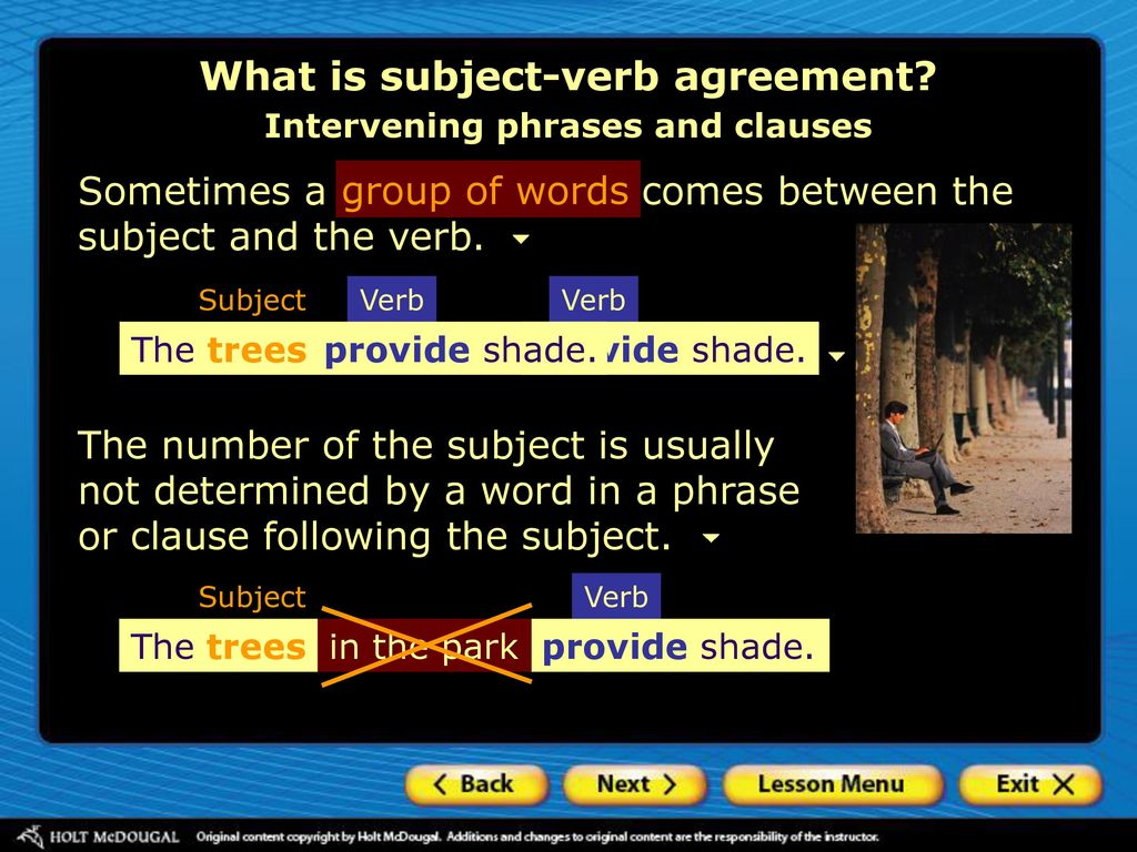 Using Subject Verb Agreement Ppt Download