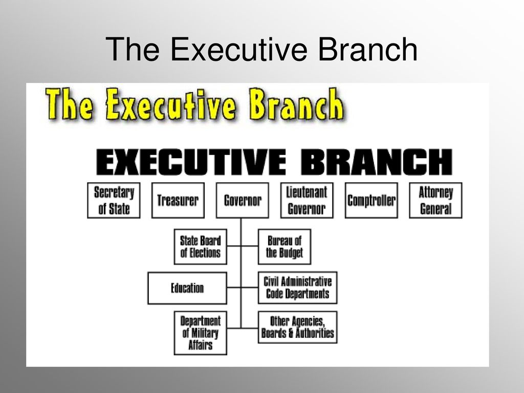Illinois Government Study Guide. 2 The Executive Branch