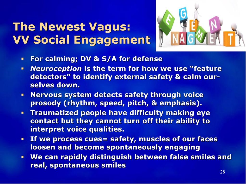 The Newest Vagus: VV Social Engagement