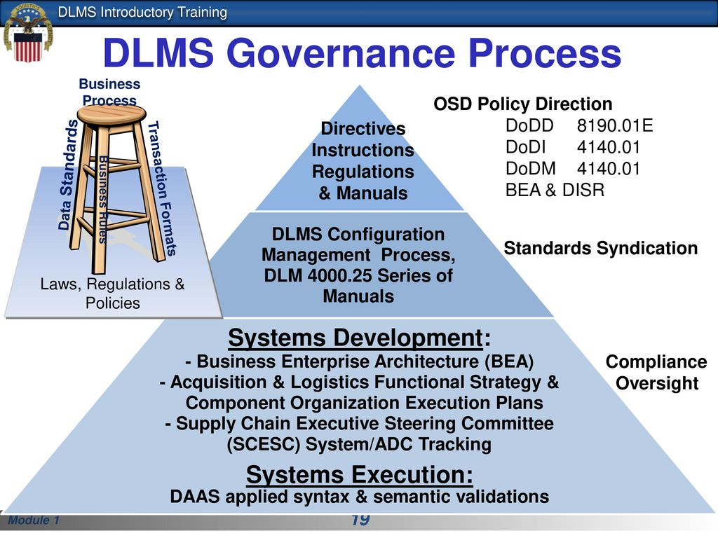 19 DLMS Governance Process