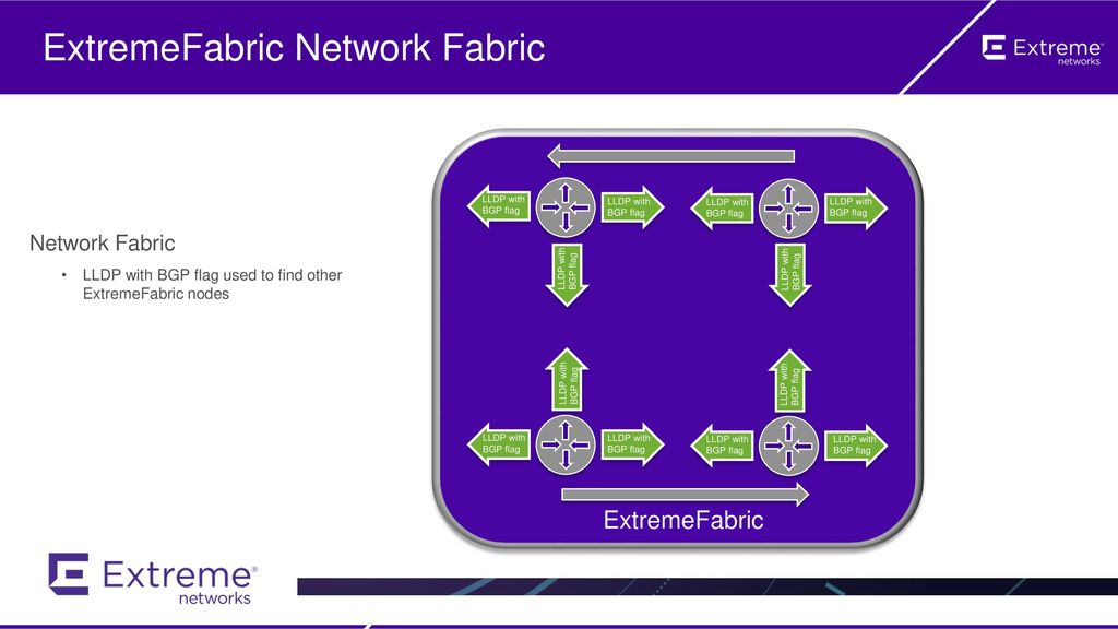 ExtremeFabric Network Fabric