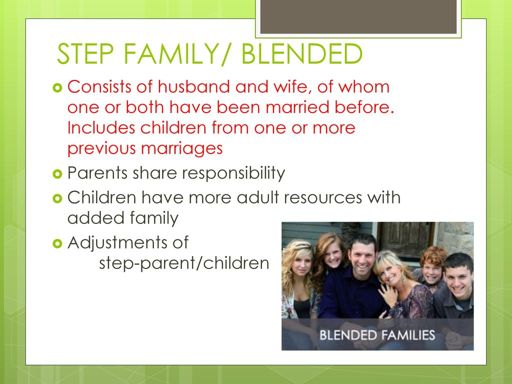 Types of Families  - ppt download