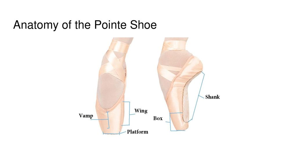 Biomechanics of Pointe Shoes - ppt download