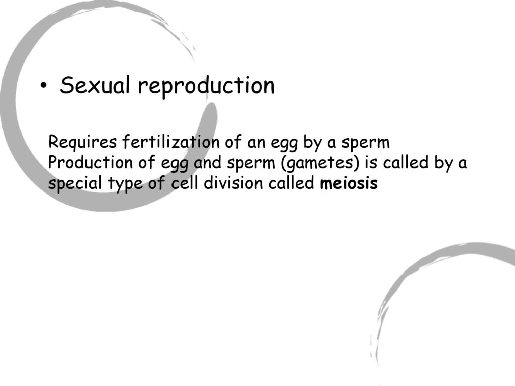 truth-about-egg-and-sperm-production