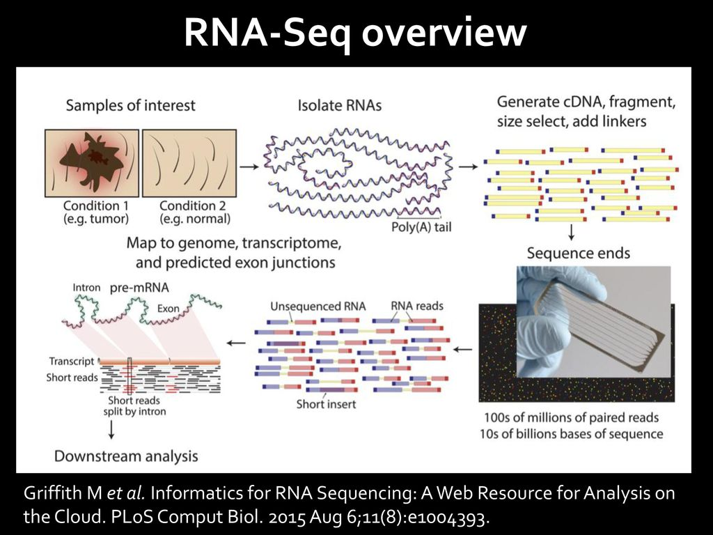 Differential expression analysis with RNA-Seq - ppt video