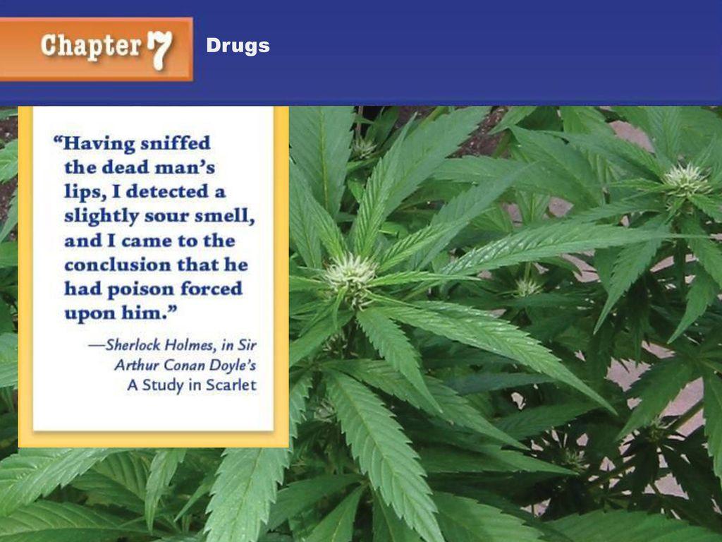 Chapter 7 Drugs Kendall/Hunt. - ppt download