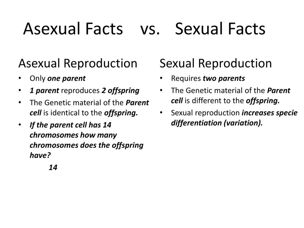Asexual versus sexual reproduction worksheet answers