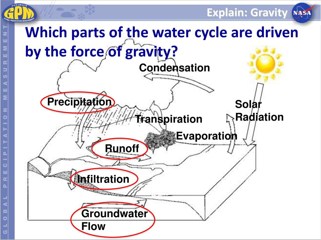 further Hydrological Cycle Worksheet Cycle Worksheet Water Cycle Worksheet also The Water Cycle   Review Worksheet  Editable  by Tangstar Science also Pinelands Water Cycle Worksheet Answer Key furthermore  besides Water cycle  worksheet s     answers additionally The Water Cycle Worksheet Answers Great Geometry Worksheets moreover The Water Cycle Worksheet Answers   Briefencounters further eliserice club wp content uploads  2018 08 water c together with Water Cycle Crossword Worksheets A Puzzle For The Grade Science Or furthermore 14 Exciting Parts Of Attending   Label Maker Ideas Information additionally Exploring the Water Cycle Lesson   ppt download together with Water Cycle Worksheet Ks2 Tes New Water Cycle Worksheet Middle furthermore Water Carbon And Nitrogen Cycle Worksheet   Water Ionizer besides Differentiated Video Worksheet  Quiz   Ans  for Bill Nye   Water Cycle furthermore The Water Cycle Crossword Puzzle Worksheet for 2nd   3rd Grade. on the water cycle worksheet answers