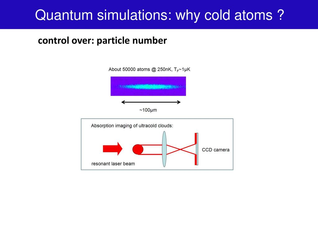 Quantum simulations with cold atoms: from solid-state to high-energy