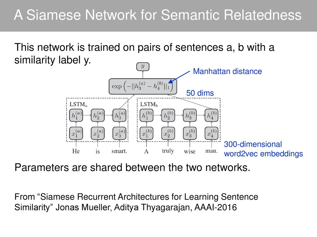 Lecture 13: Text Processing with DNNs - ppt download
