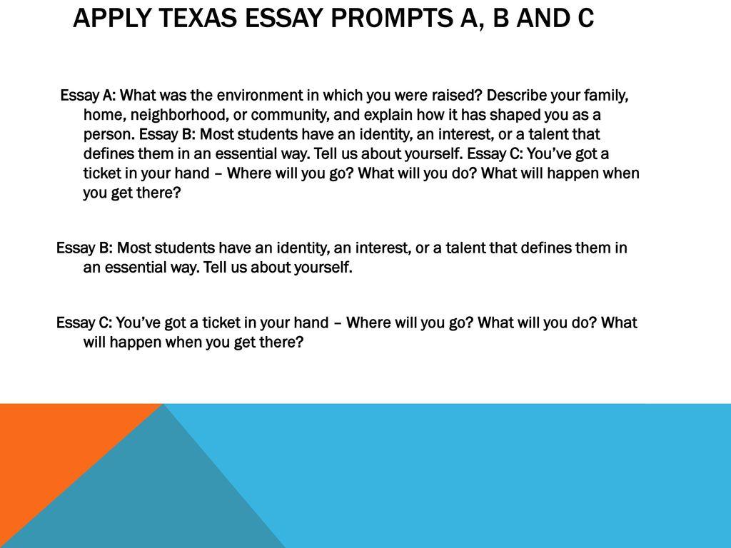 class experience essay
