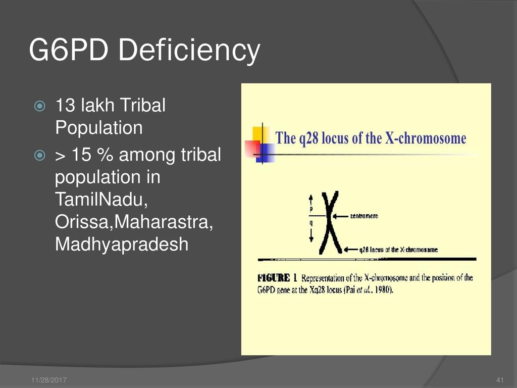 Tribal Health Status in India - ppt download