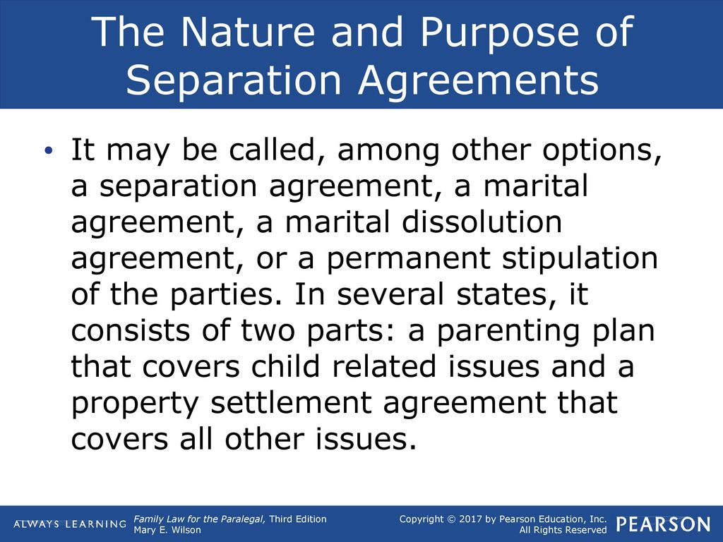 13 Separation Agreements Ppt Download
