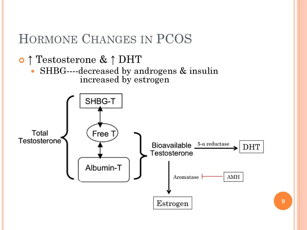 Hormone Changes In Pcos