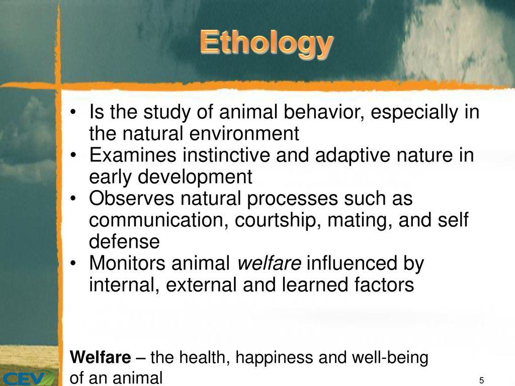 importance of animal behavior