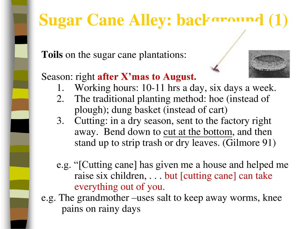 Dung sugar summary: amazing story of a song collector 34