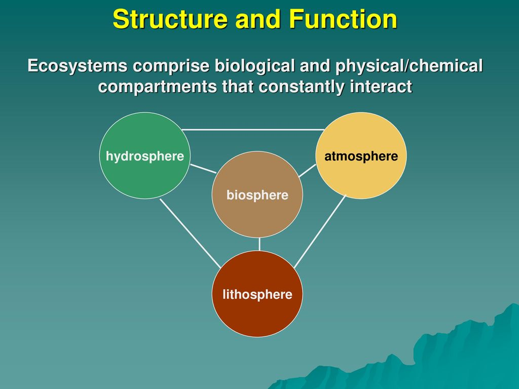The functions and structure of the biosphere briefly 70