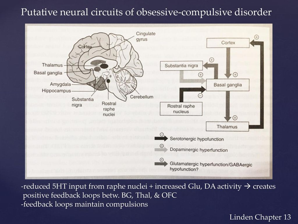 Obsessive-compulsive disorder (OCD) - ppt download on