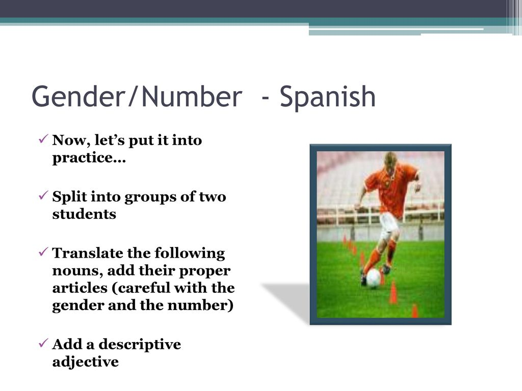 Gendernumber Spanish Review Ppt Download