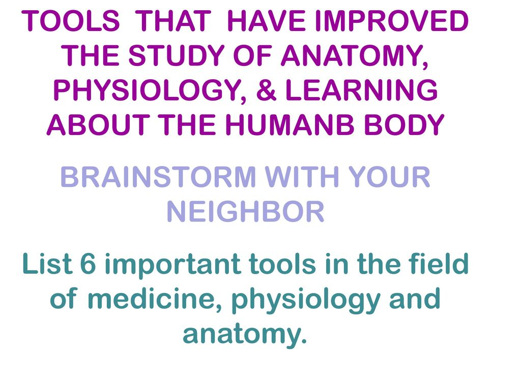 A Brief History of the Study of Human Anatomy - ppt download