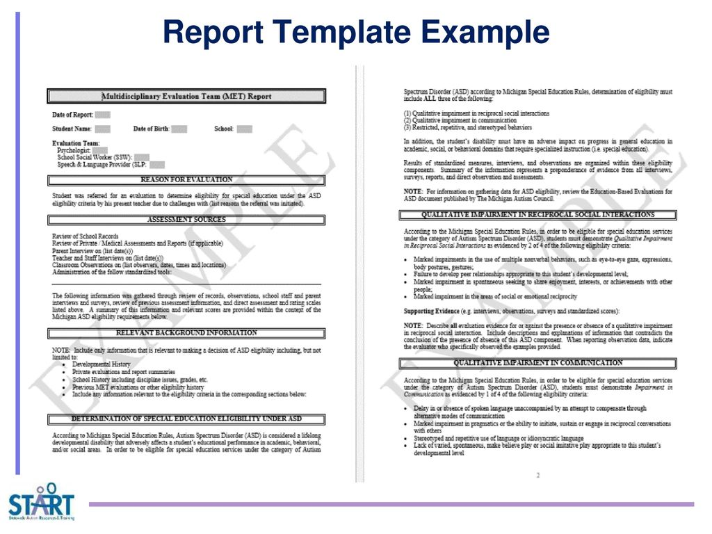 behavior observation report template