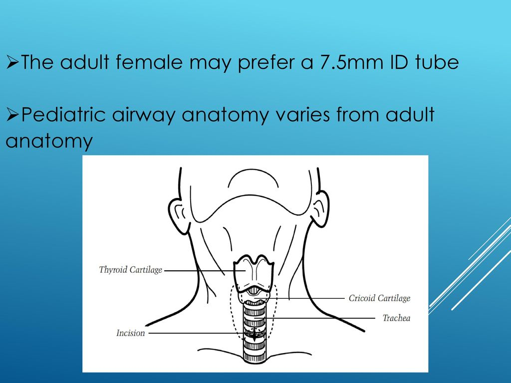 Rota-Trach™\' Double Lumen Tracheostomy Tube - ppt video online download