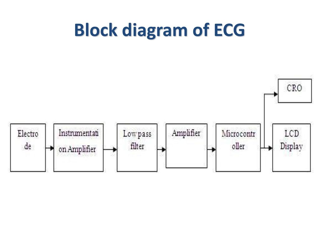 physiologic signals lecture 2 ppt download rh slideplayer com ecg block diagram with explanation ecg block diagram with explanation ppt