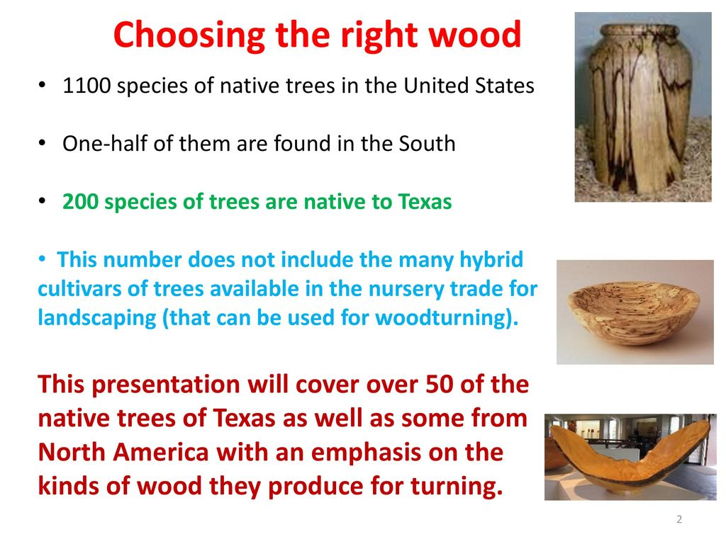 Choosing the right wood for your woodturning project - ppt