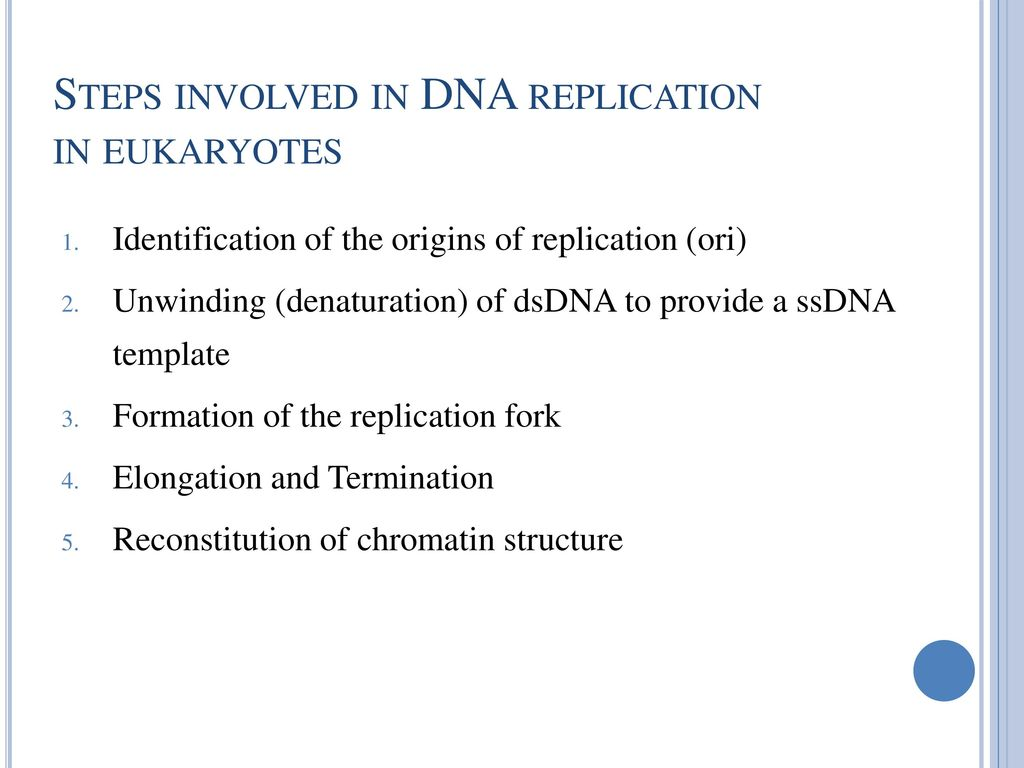 Introduction to Molecular Biology and DNA Replication - ppt download