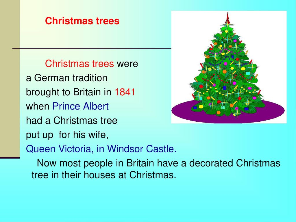 4 christmas trees - When To Put Up Christmas Tree