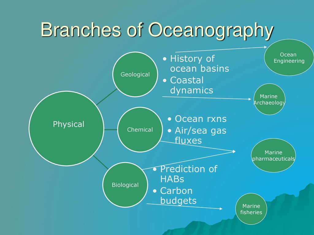 branches of oceanography