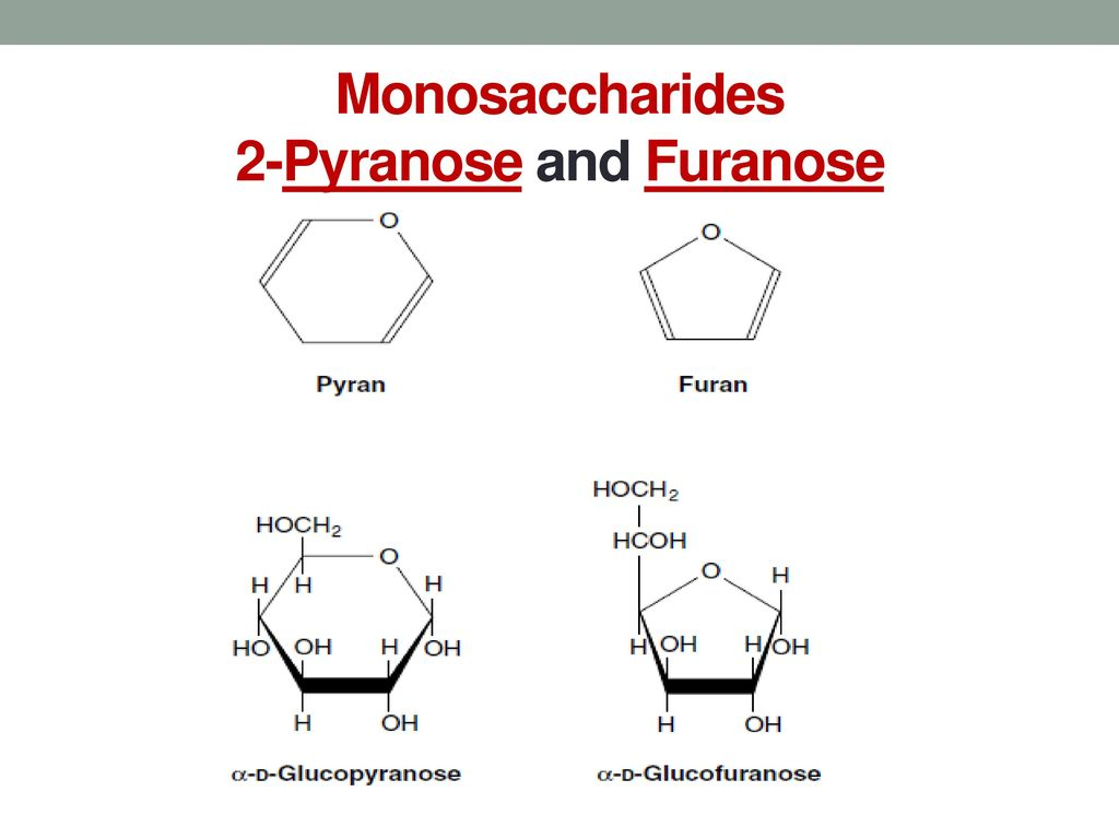 Carbohydrates Biochemistry For Nurse Faculty Ppt Download