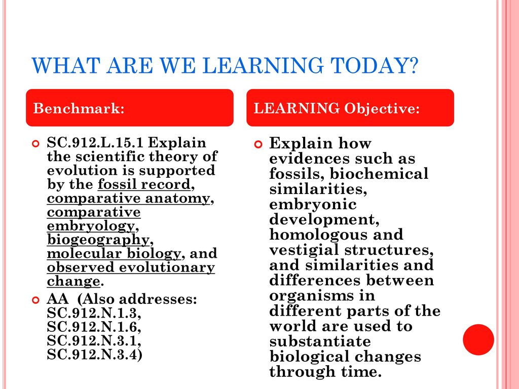 TOPIC 7- EVIDENCE FOR THE THEORY OF EVOLUTION - ppt download