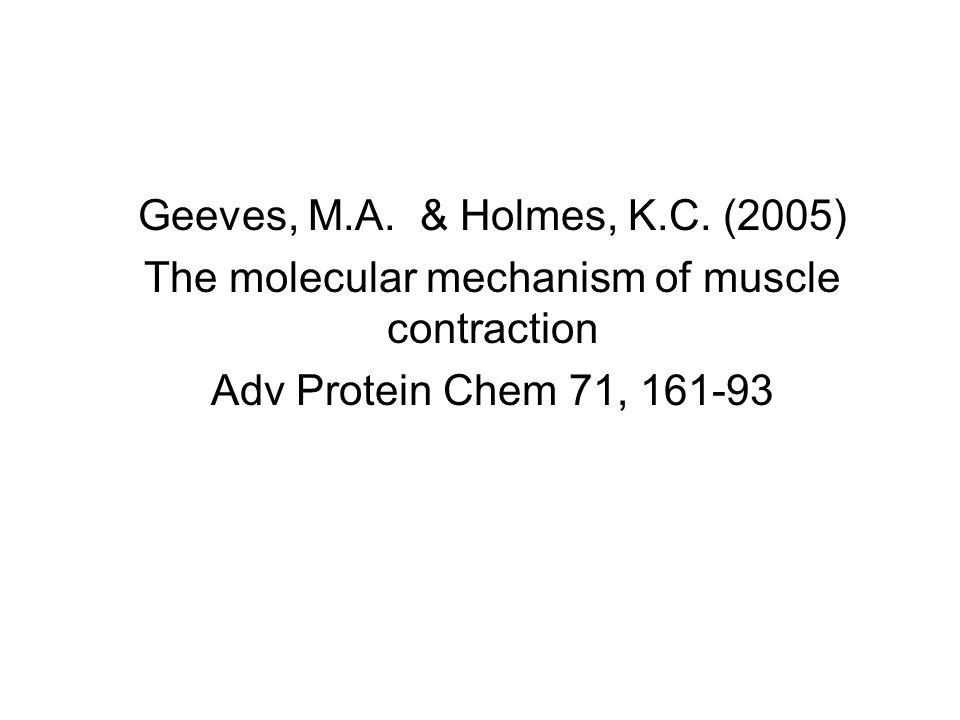 The molecular mechanism of muscle contraction