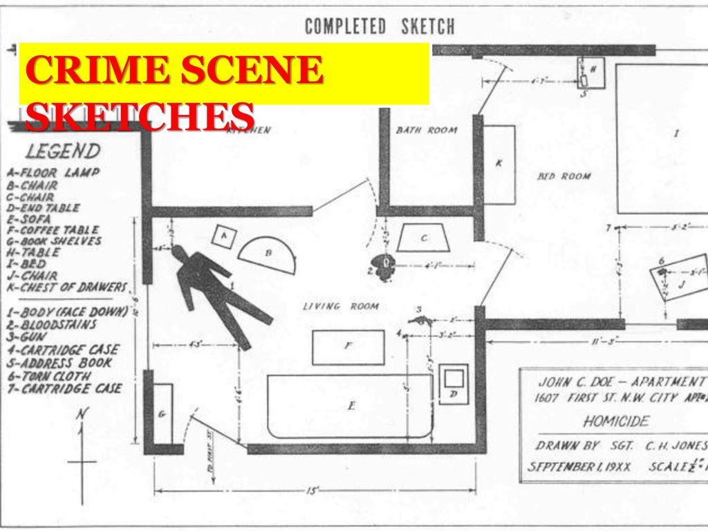 Crime Scene Sketches Ppt Download