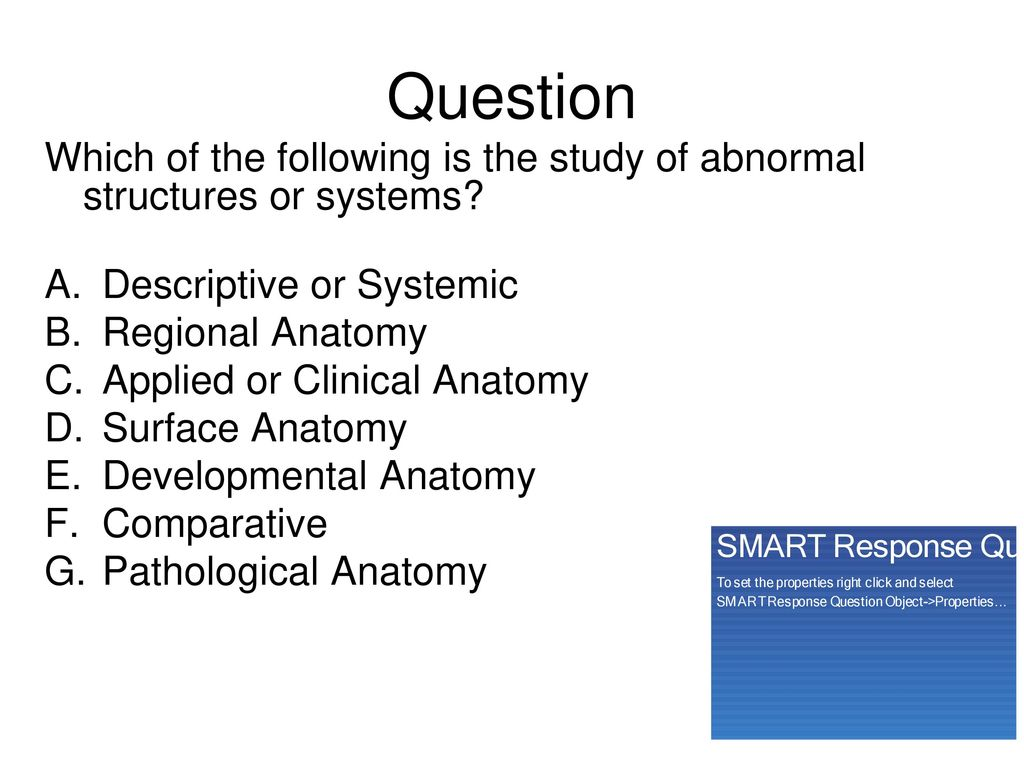 Anatomy & Physiology Chapter 1 - ppt download