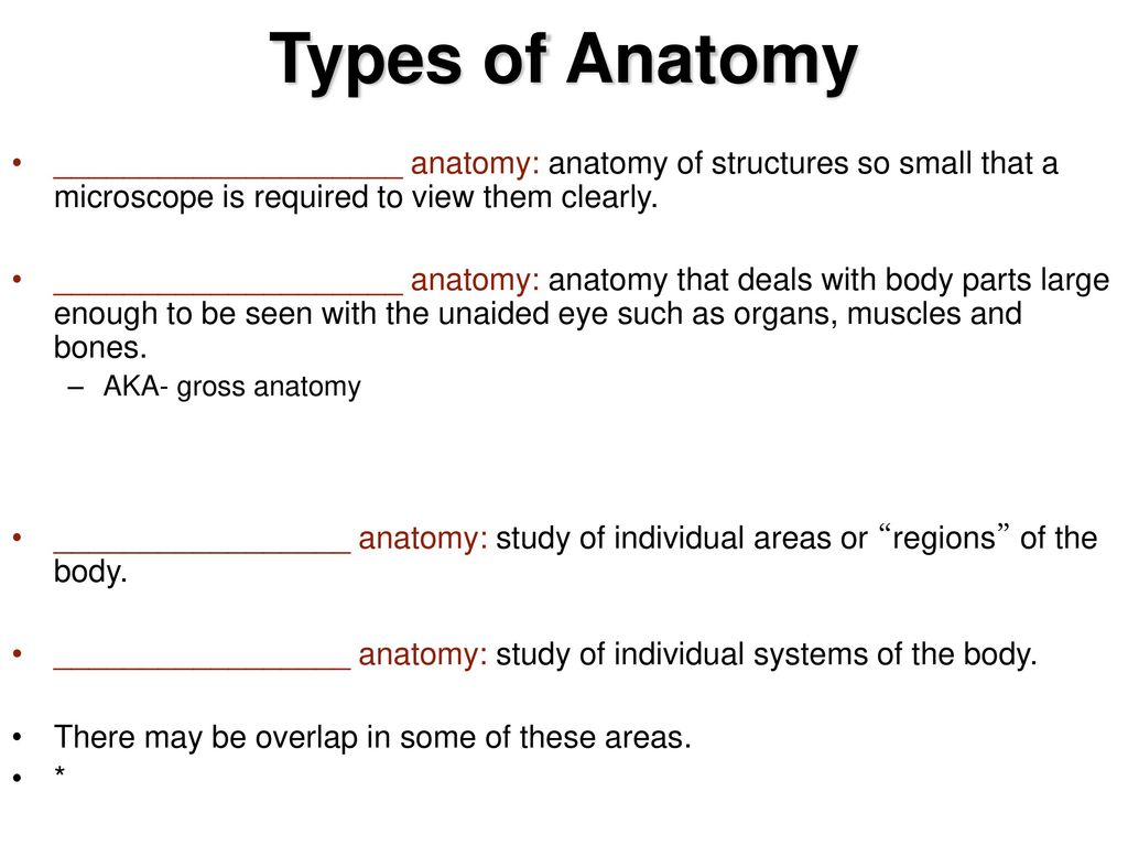 Anatomy deals with