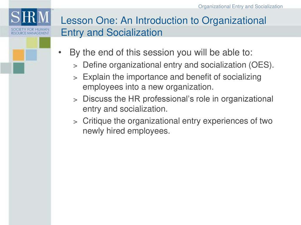 importance of socialization in organization
