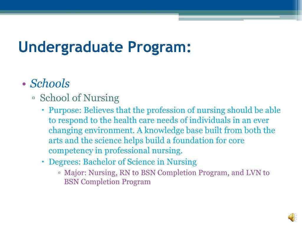 Academic Catalog: Undergraduate Degree Programs - ppt download