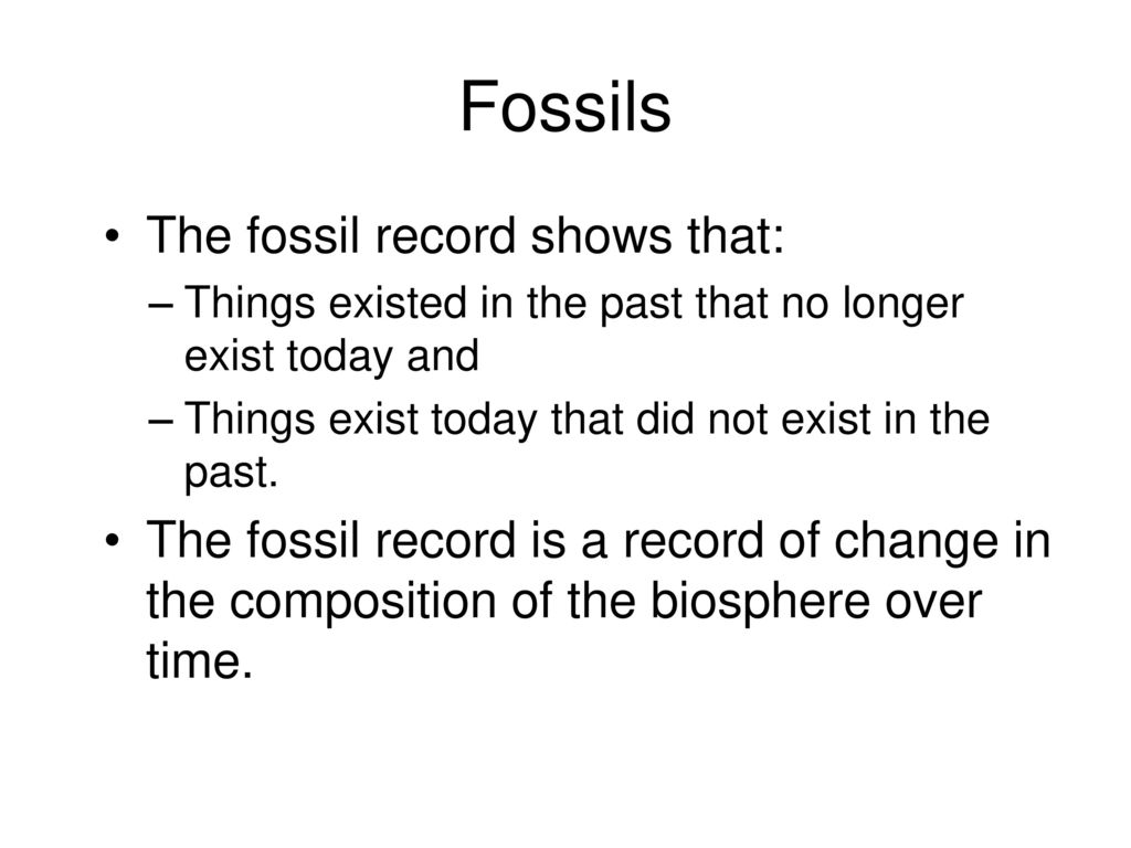 the correlation between the human evolution and fossil records Transitional fossils in the human fossil record are distinguished at both the genus and species level this group includes the extinct genera ardipithecus in future posts, i will describe the evidence for human evolution and why this evidence is compelling it suggests that we have had a long, varied.